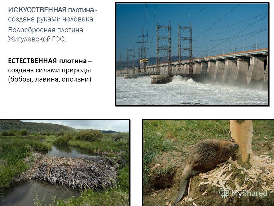 ИСКУССТВЕННАЯ плотина - создана руками человека Водосбросная плотина Жигулевской ГЭС. ЕСТЕСТВЕННАЯ плотина – создана силами природы (бобры, лавина, оползни)