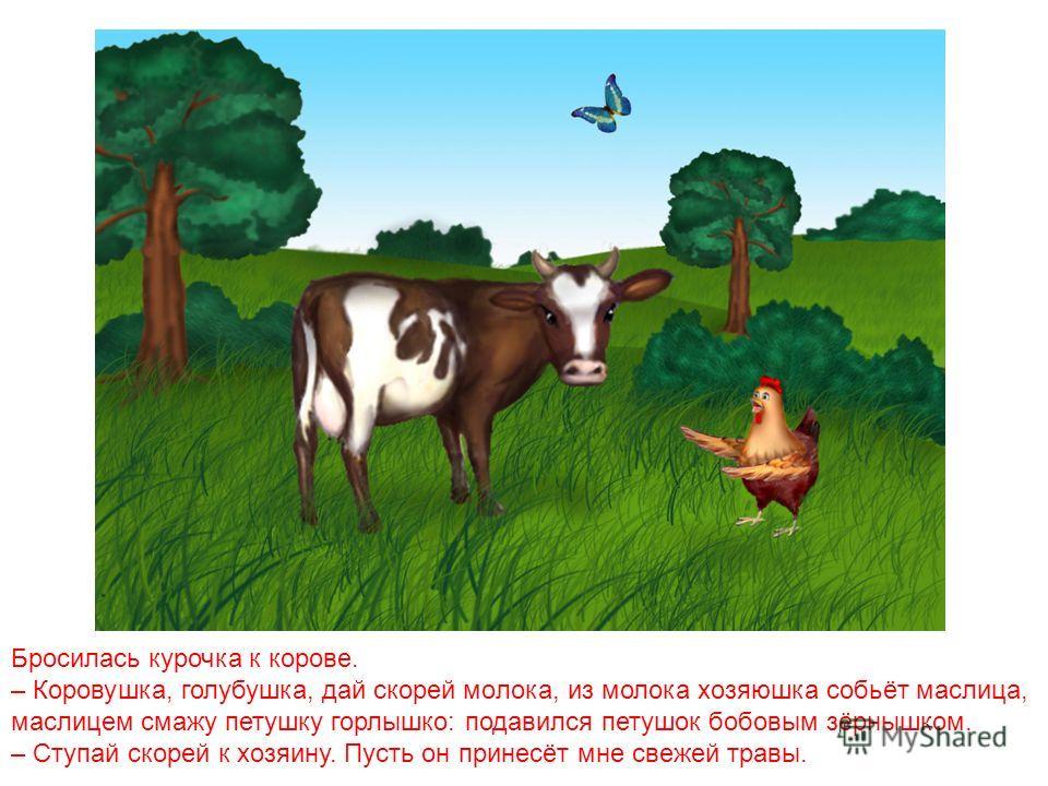 Перепугалась курочка, бросилась к хозяйке, кричит: – Ой, хозяюшка, дай скорей маслица, петушку горлышко смазать: подавился петушок бобовым зёрнышком. – Беги скорей к коровушке, попроси у неё молока, а я уже собью маслица.