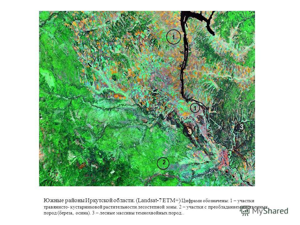 Южные районы Иркутской области. (Landsat-7 ETM+) Цифрами обозначены: 1 – участки травянисто- кустарниковой растительности лесостепной зоны. 2 – участки с преобладанием лиственных пород (береза, осина). 3 – лесные массивы темнохвойных пород.. 1 1 2 3
