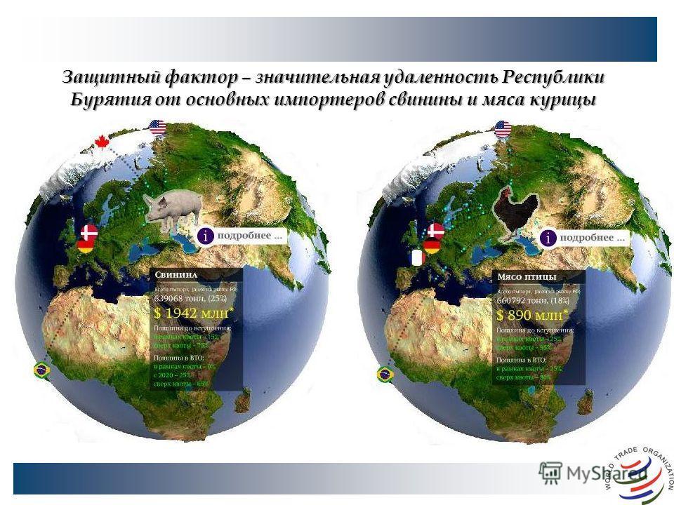 Защитный фактор – значительная удаленность Республики Бурятия от основных импортеров свинины и мяса курицы
