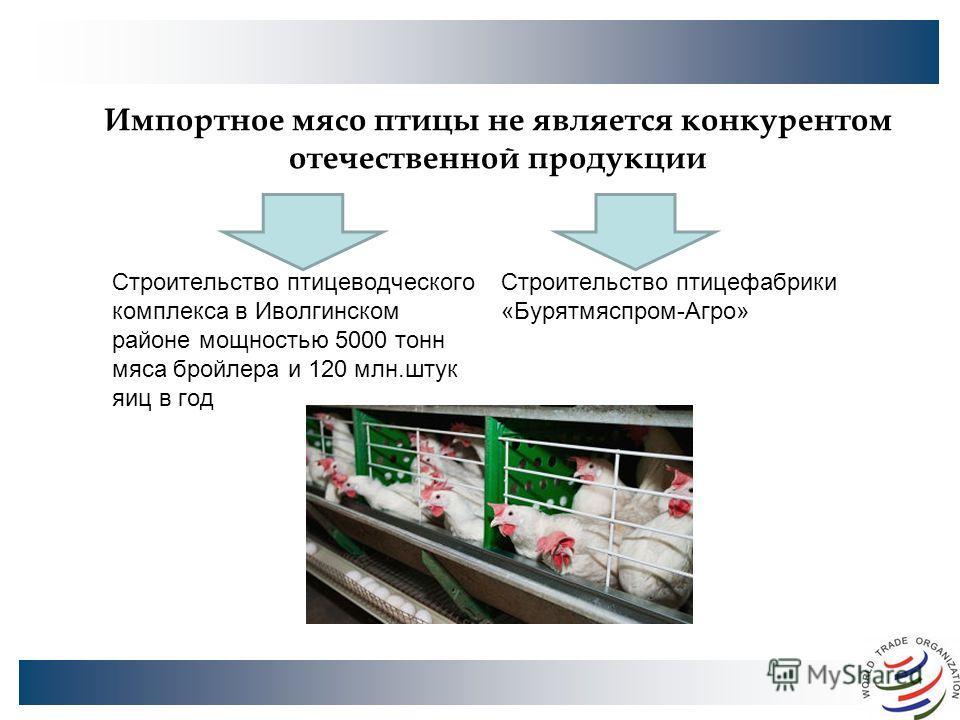 Импортное мясо птицы не является конкурентом отечественной продукции Строительство птицеводческого комплекса в Иволгинском районе мощностью 5000 тонн мяса бройлера и 120 млн.штук яиц в год Строительство птицефабрики «Бурятмяспром-Агро»