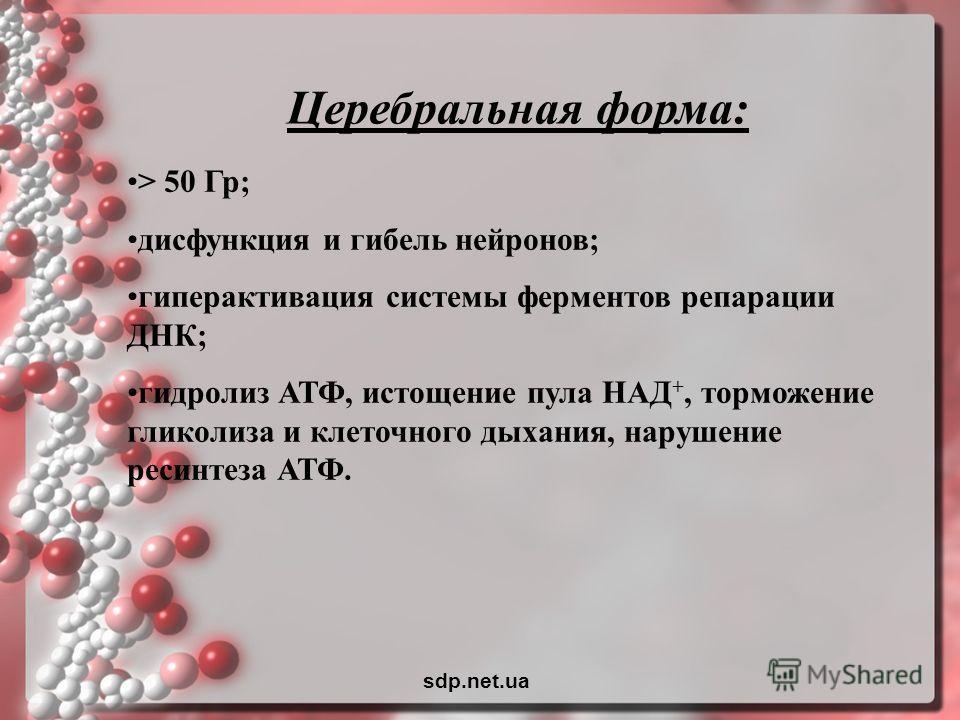 Церебральная форма: > 50 Гр; дисфункция и гибель нейронов; гиперактивация системы ферментов репарации ДНК; гидролиз АТФ, истощение пула НАД +, торможение гликолиза и клеточного дыхания, нарушение ресинтеза АТФ. sdp.net.ua