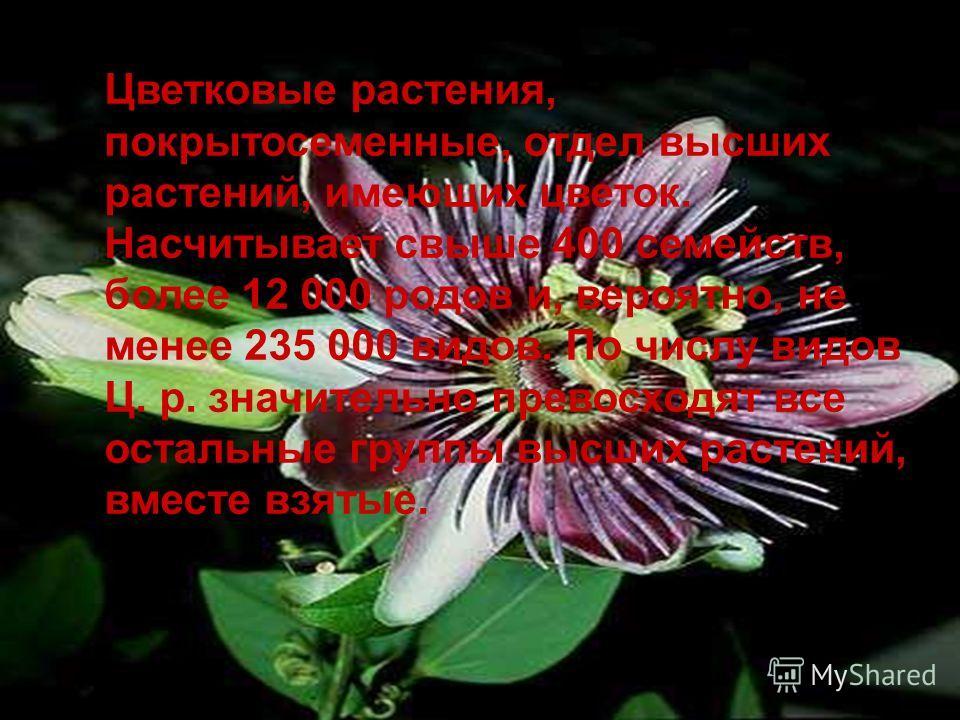 Цветковые растения, покрытосеменные, отдел высших растений, имеющих цветок. Насчитывает свыше 400 семейств, более 12 000 родов и, вероятно, не менее 235 000 видов. По числу видов Ц. р. значительно превосходят все остальные группы высших растений, вме