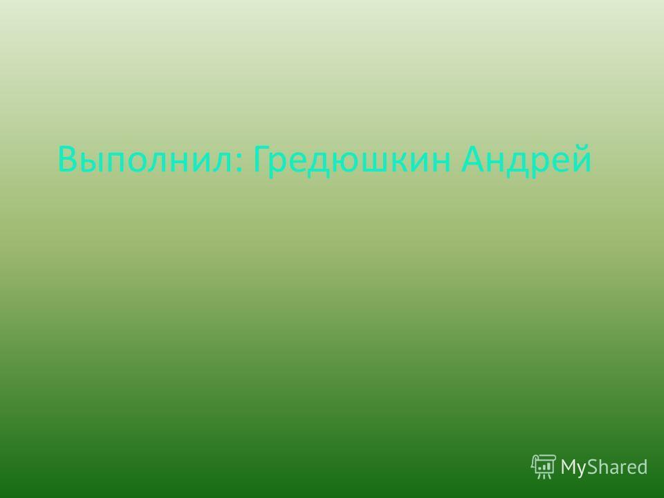 Выполнил: Гредюшкин Андрей