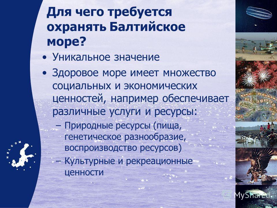 Для чего требуется охранять Балтийское море? Уникальное значение Здоровое море имеет множество социальных и экономических ценностей, например обеспечивает различные услуги и ресурсы: –Природные ресурсы (пища, генетическое разнообразие, воспроизводств