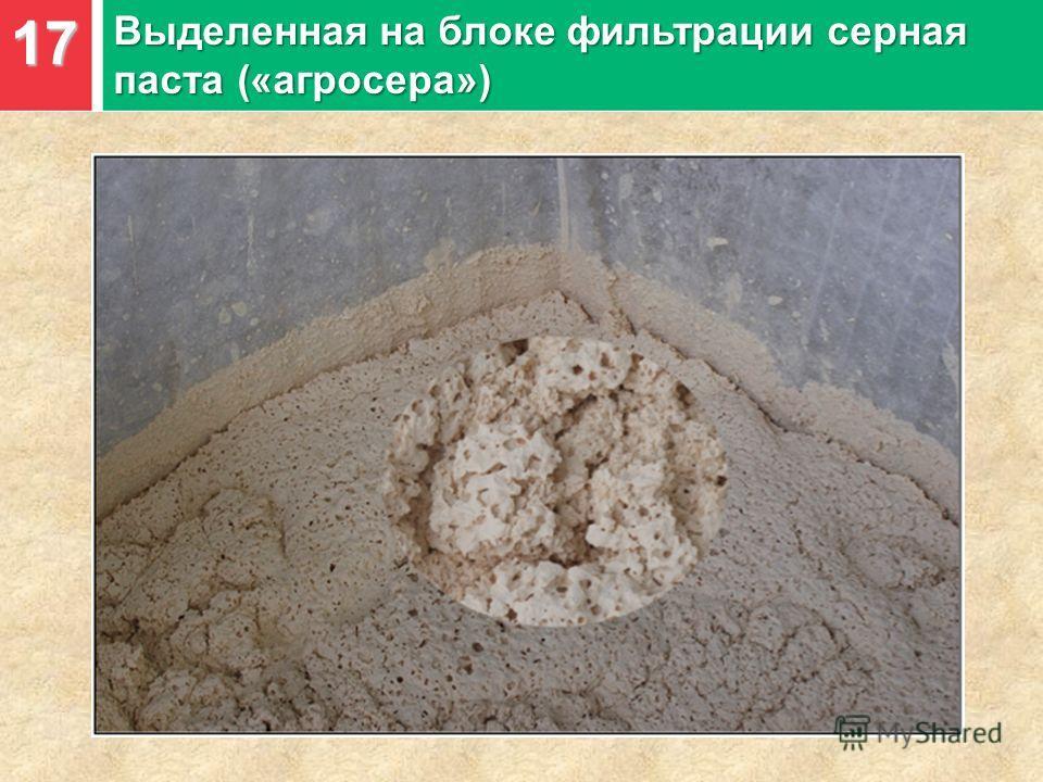 17 Выделенная на блоке фильтрации серная паста («агросера»)