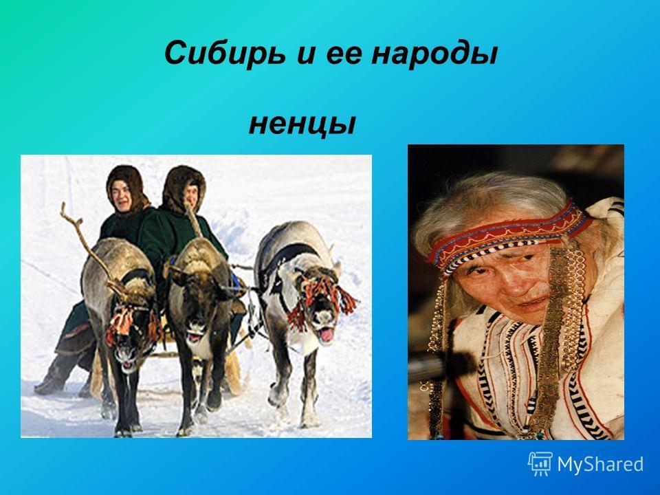 Сибирь и ее народы ненцы
