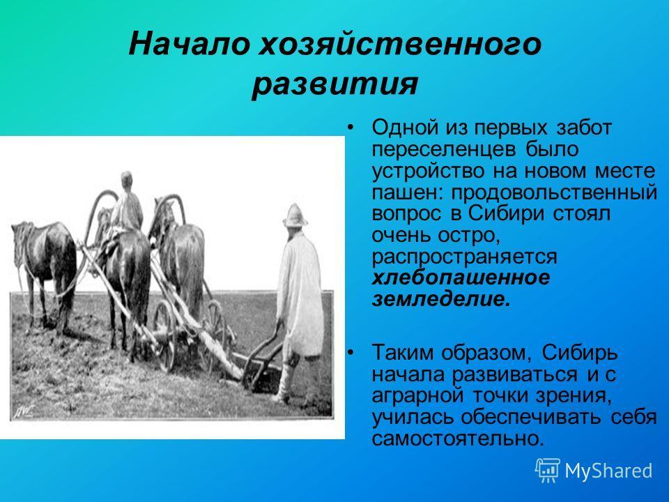Начало хозяйственного развития Одной из первых забот переселенцев было устройство на новом месте пашен: продовольственный вопрос в Сибири стоял очень остро, распространяется хлебопашенное земледелие. Таким образом, Сибирь начала развиваться и с аграр