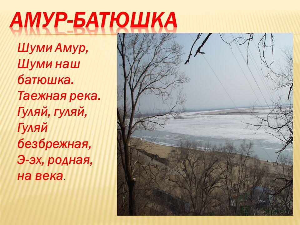 Шуми Амур, Шуми наш батюшка. Таежная река. Гуляй, гуляй, Гуляй безбрежная, Э-эх, родная, на века.