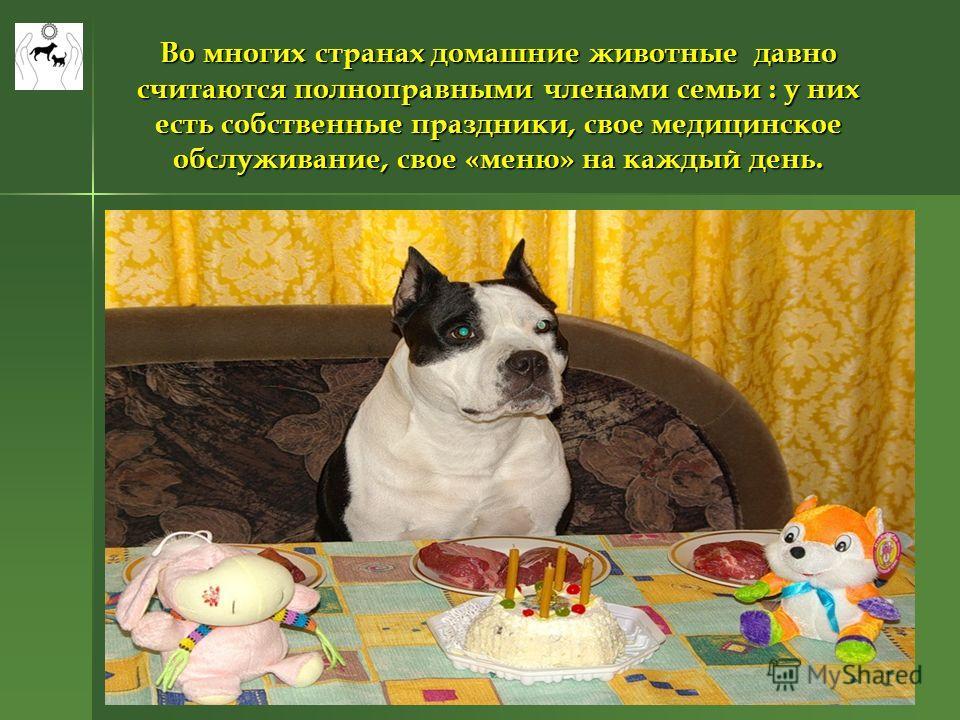 Во многих странах домашние животные давно считаются полноправными членами семьи : у них есть собственные праздники, свое медицинское обслуживание, свое «меню» на каждый день.
