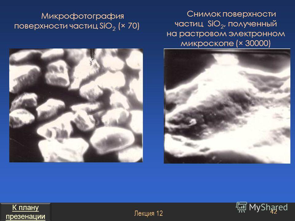 Снимок поверхности частиц SiO 2, полученный на растровом электронном микроскопе (× 30000) 42 Лекция 12 Микрофотография поверхности частиц SiO 2 (× 70) К плану презенации К плану презенации