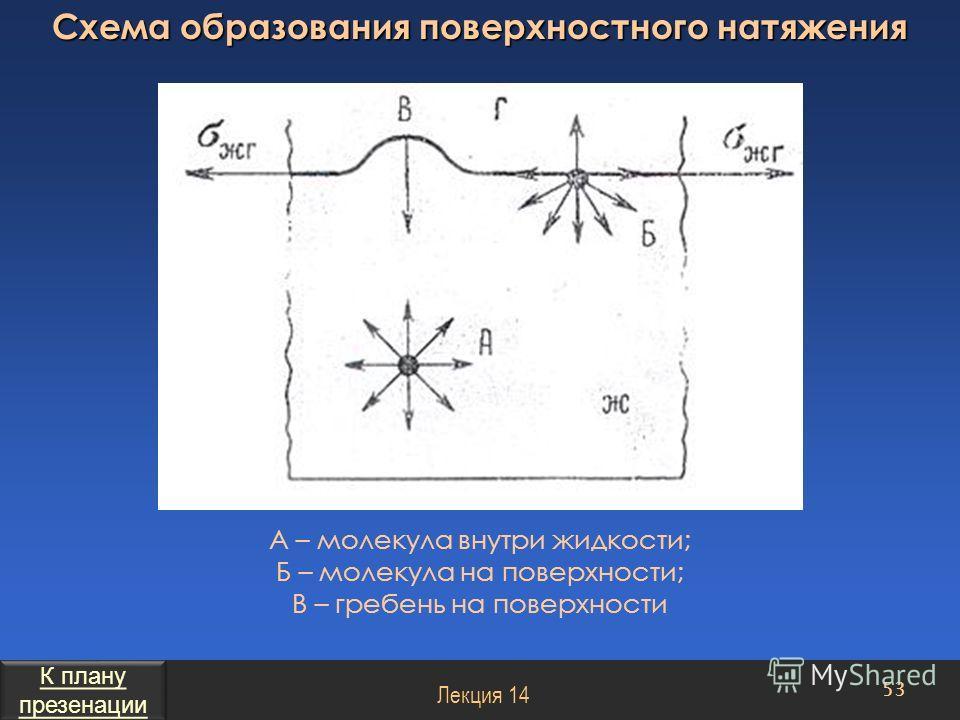 А – молекула внутри жидкости; Б – молекула на поверхности; В – гребень на поверхности 53 Лекция 14 Схема образования поверхностного натяжения К плану презенации К плану презенации