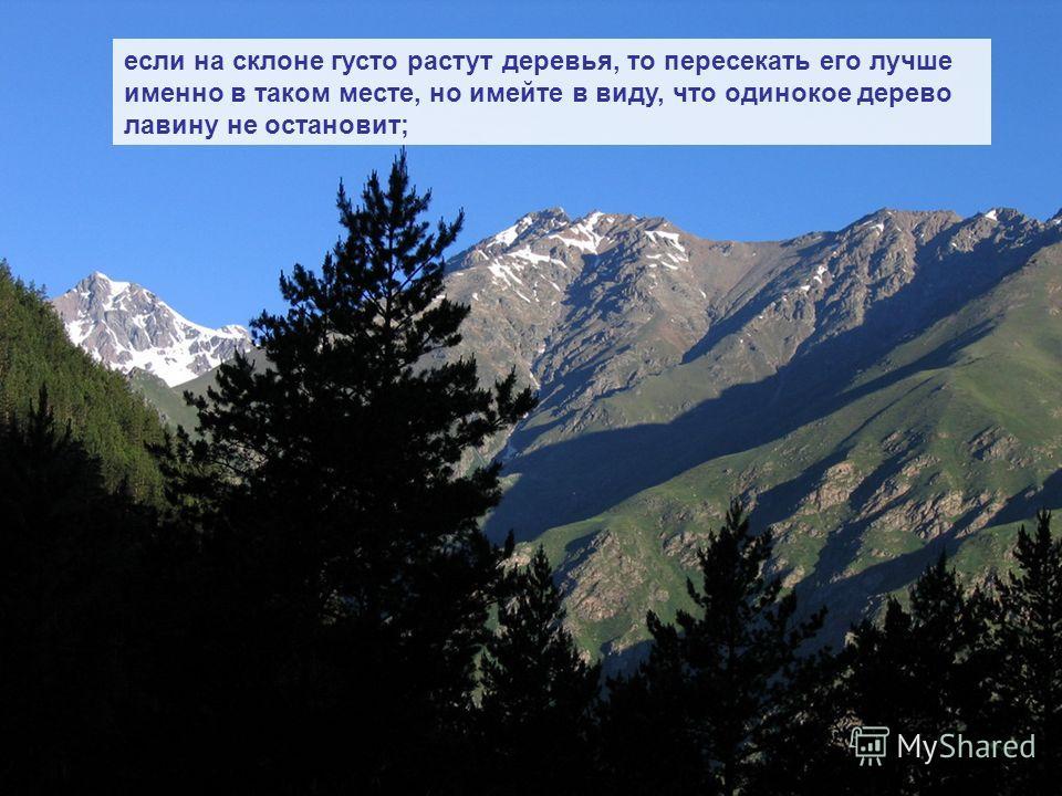 если на склоне густо растут деревья, то пересекать его лучше именно в таком месте, но имейте в виду, что одинокое дерево лавину не остановит;