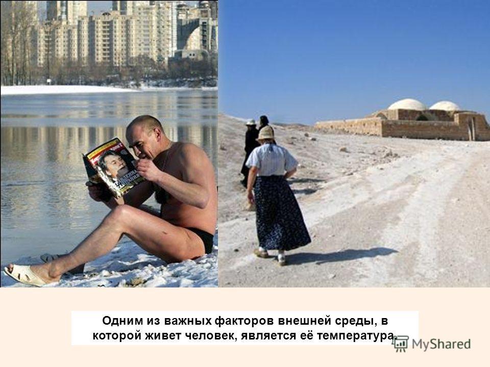 Одним из важных факторов внешней среды, в которой живет человек, является её температура.