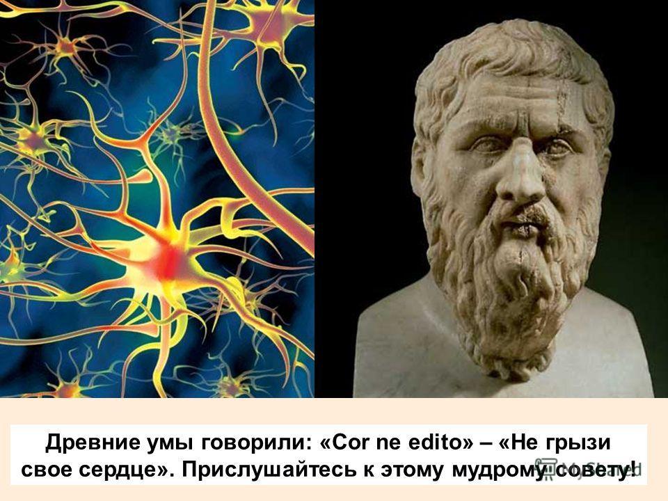 Древние умы говорили: «Cor ne edito» – «Не грызи свое сердце». Прислушайтесь к этому мудрому совету!
