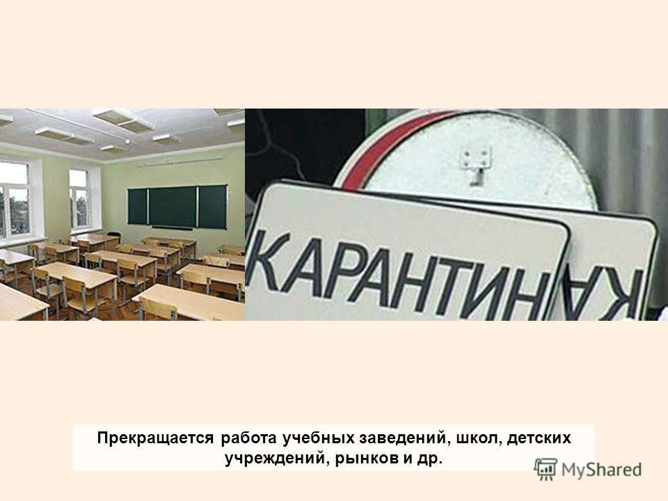 Прекращается работа учебных заведений, школ, детских учреждений, рынков и др.