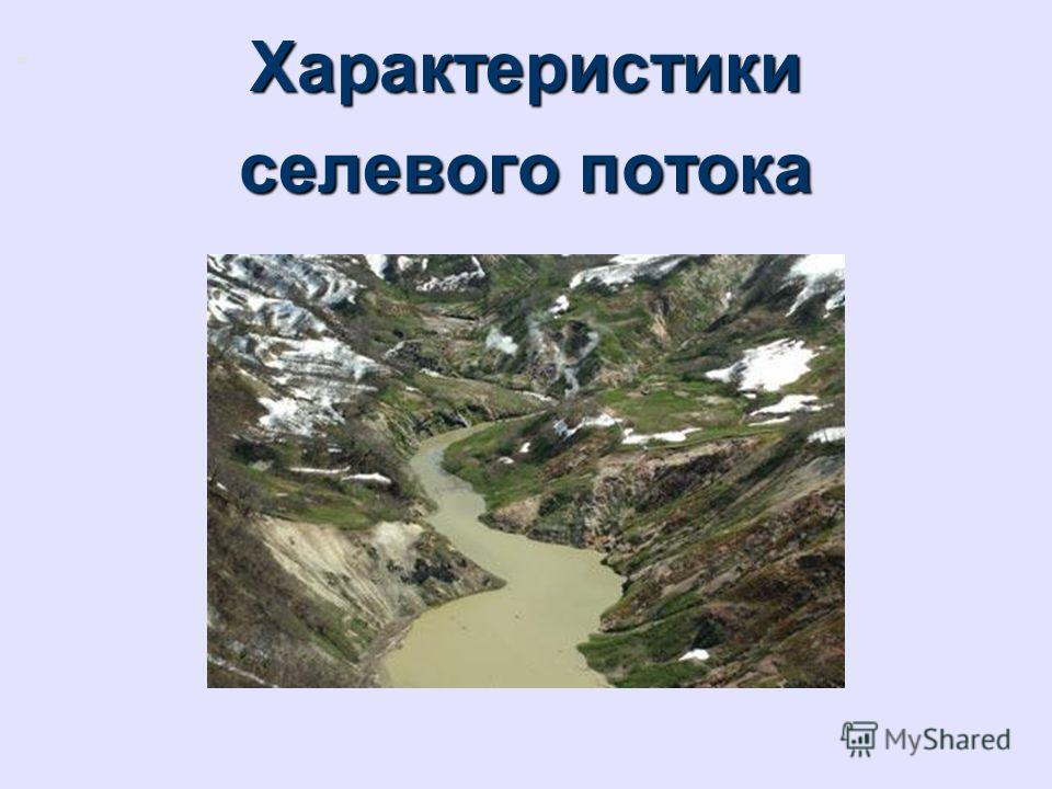 Характеристики селевого потока