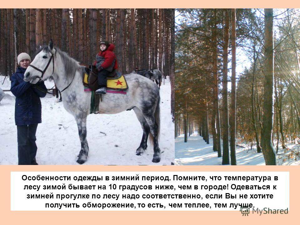 Особенности одежды в зимний период. Помните, что температура в лесу зимой бывает на 10 градусов ниже, чем в городе! Одеваться к зимней прогулке по лесу надо соответственно, если Вы не хотите получить обморожение, то есть, чем теплее, тем лучше.