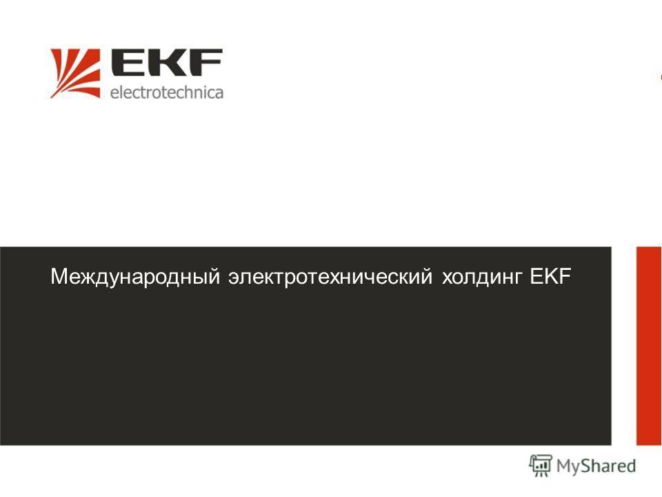 1 Международный электротехнический холдинг EKF