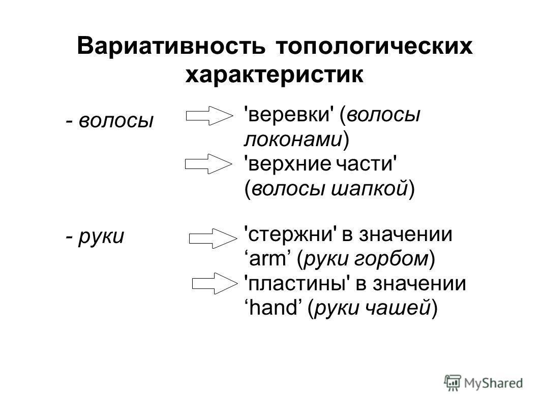 Вариативность топологических характеристик - волосы - руки 'веревки' (волосы локонами) 'верхние части' (волосы шапкой) 'стержни' в значении arm (руки горбом) 'пластины' в значении hand (руки чашей)