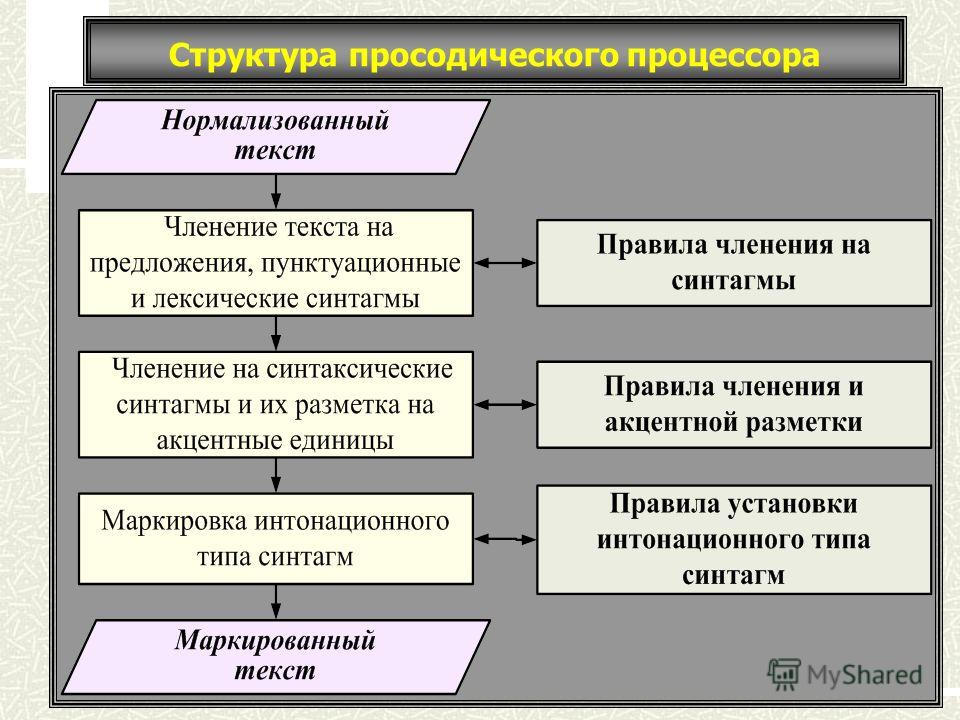 Структура просодического процессора