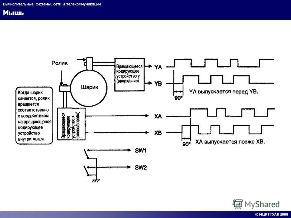 Мышь Вычислительные системы, сети и телекоммуникации © МЦИТ ГУАП 2008