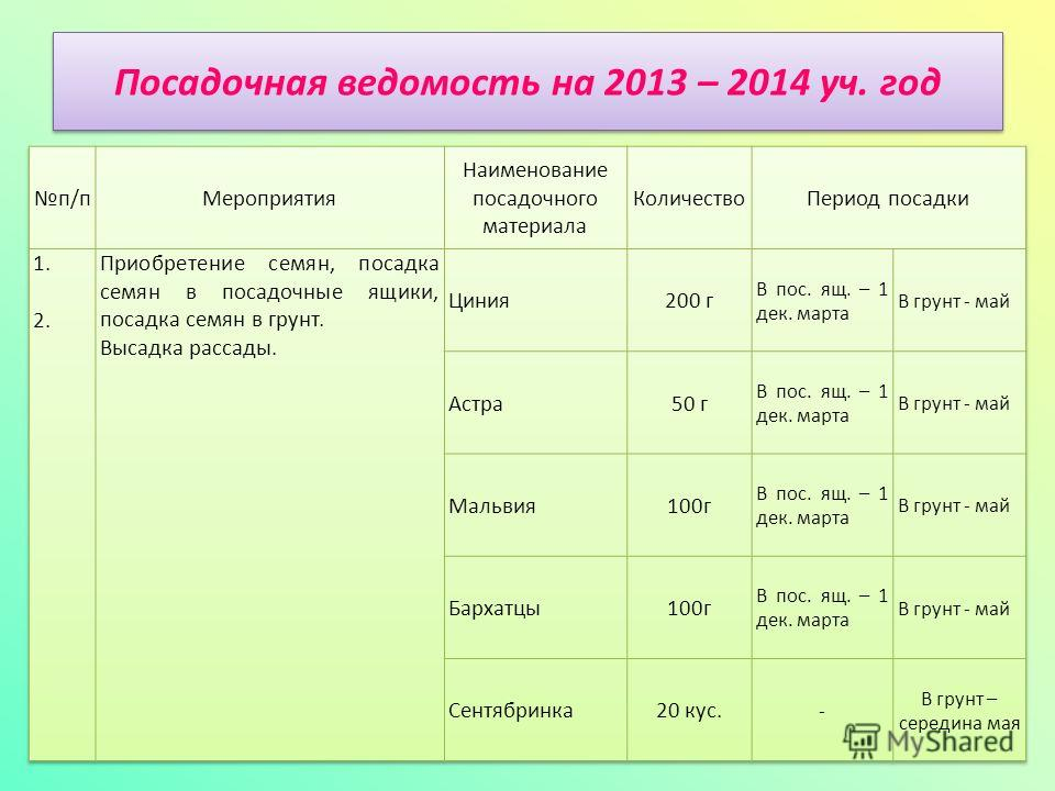 Посадочная ведомость на 2013 – 2014 уч. год