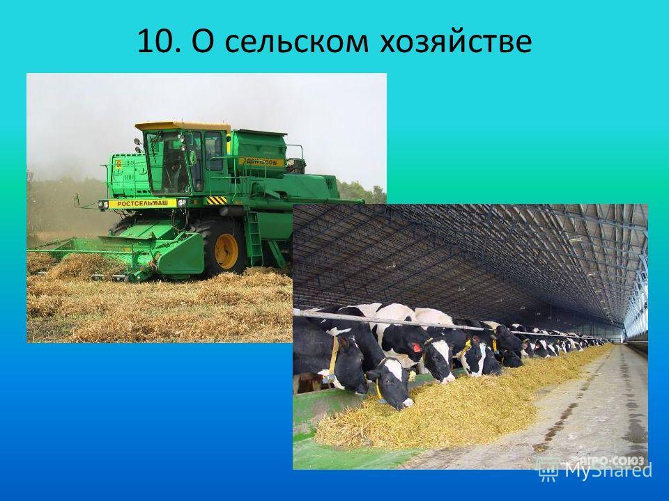 10. О сельском хозяйстве