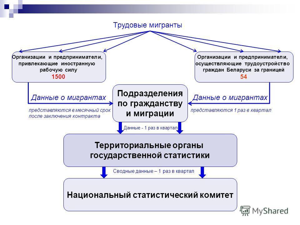 Территориальные органы государственной статистики Организации и предприниматели, привлекающие иностранную рабочую силу 1500 Подразделения по гражданству и миграции Организации и предприниматели, осуществляющие трудоустройство граждан Беларуси за гран
