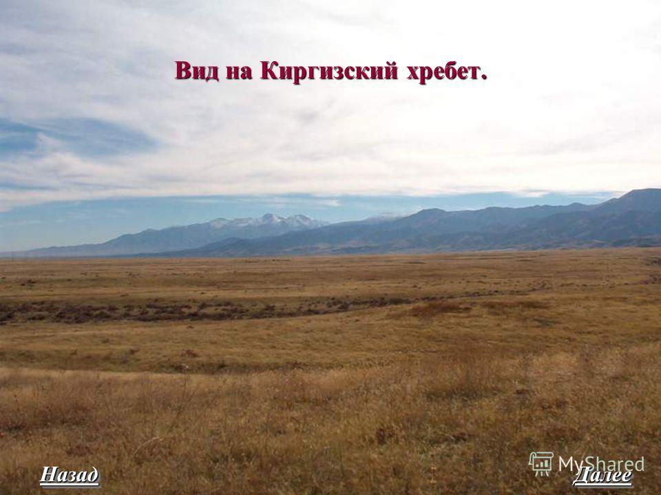 Вид на Киргизский хребет. Назад Далее