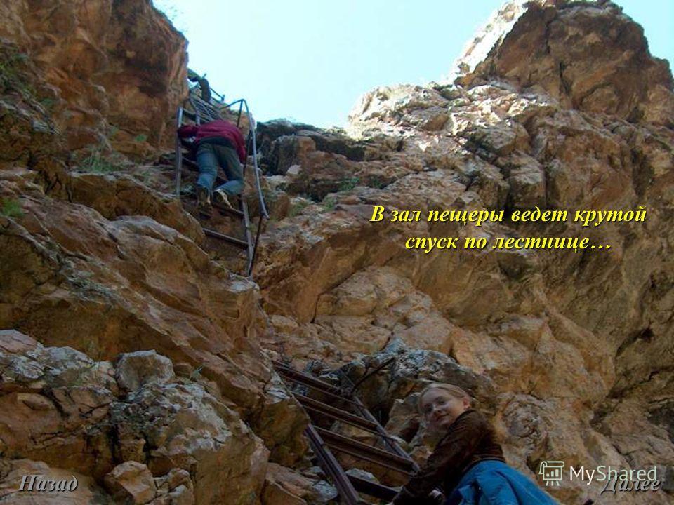 В зал пещеры ведет крутой спуск по лестнице … Назад Далее