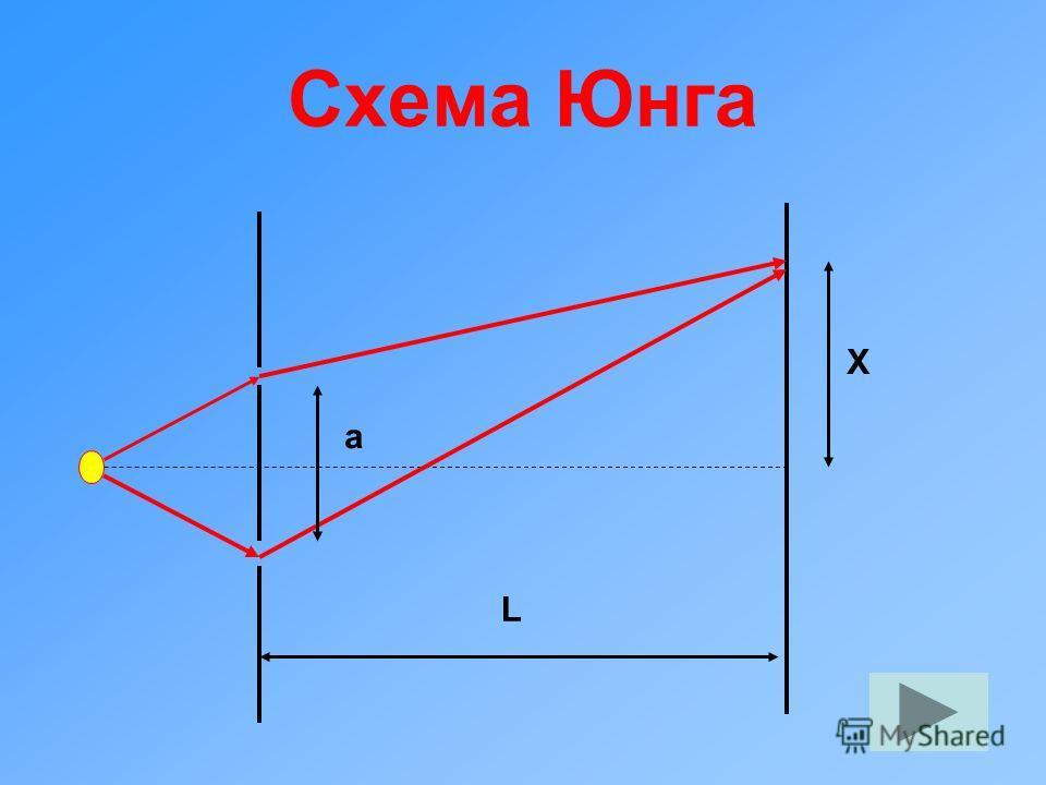 Схема Юнга X a L