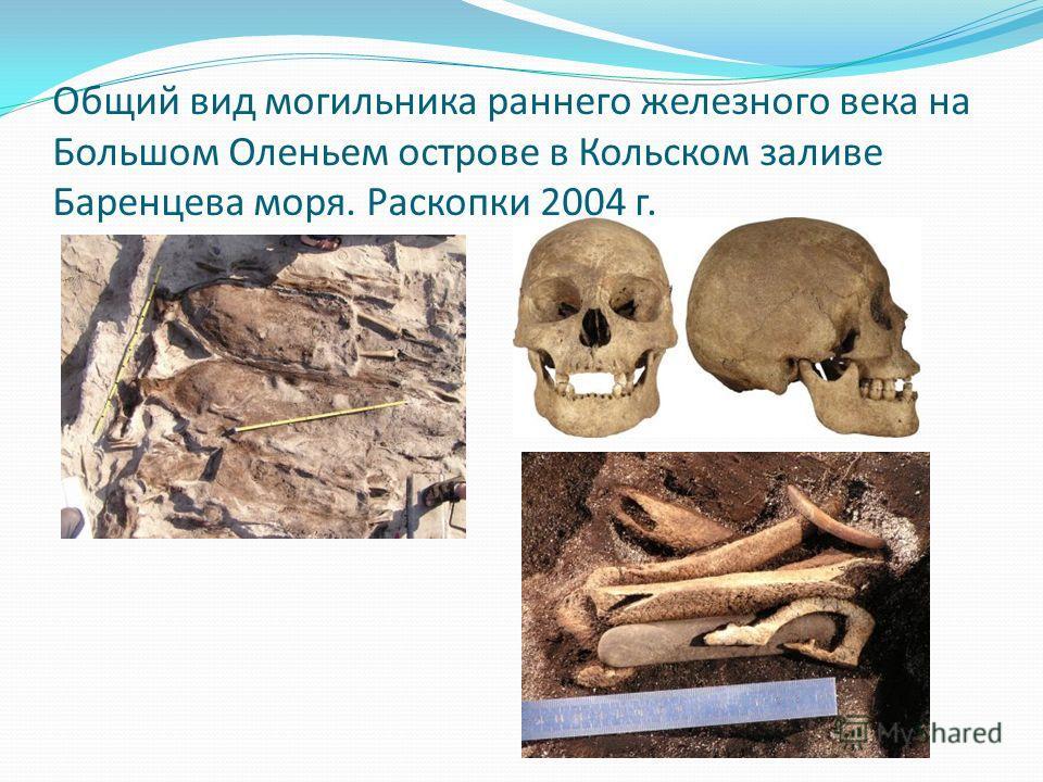 Общий вид могильника раннего железного века на Большом Оленьем острове в Кольском заливе Баренцева моря. Раскопки 2004 г.