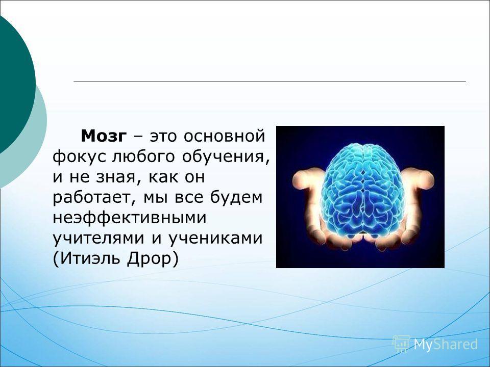 Мозг – это основной фокус любого обучения, и не зная, как он работает, мы все будем неэффективными учителями и учениками (Итиэль Дрор)