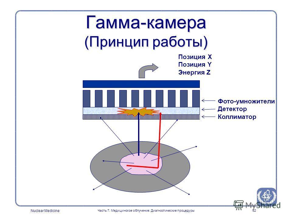 Nuclear Medicine Часть 7. Медицинское облучение. Диагностические процедуры51 Гамма-камераГамма-камера Используется для измерения пространственного и временного распределения радиофармпрепаратов Siemens