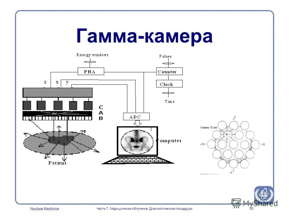 Nuclear Medicine Часть 7. Медицинское облучение. Диагностические процедуры52 Гамма-камера (Принцип работы) Фото-умножители Детектор Коллиматор Позиция X Позиция Y Энергия Z