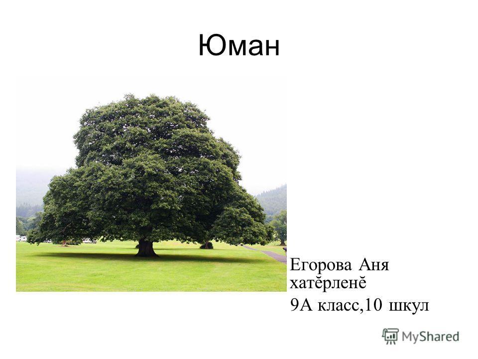 Юман Егорова Аня хатĕрленĕ 9А класс,10 шкул