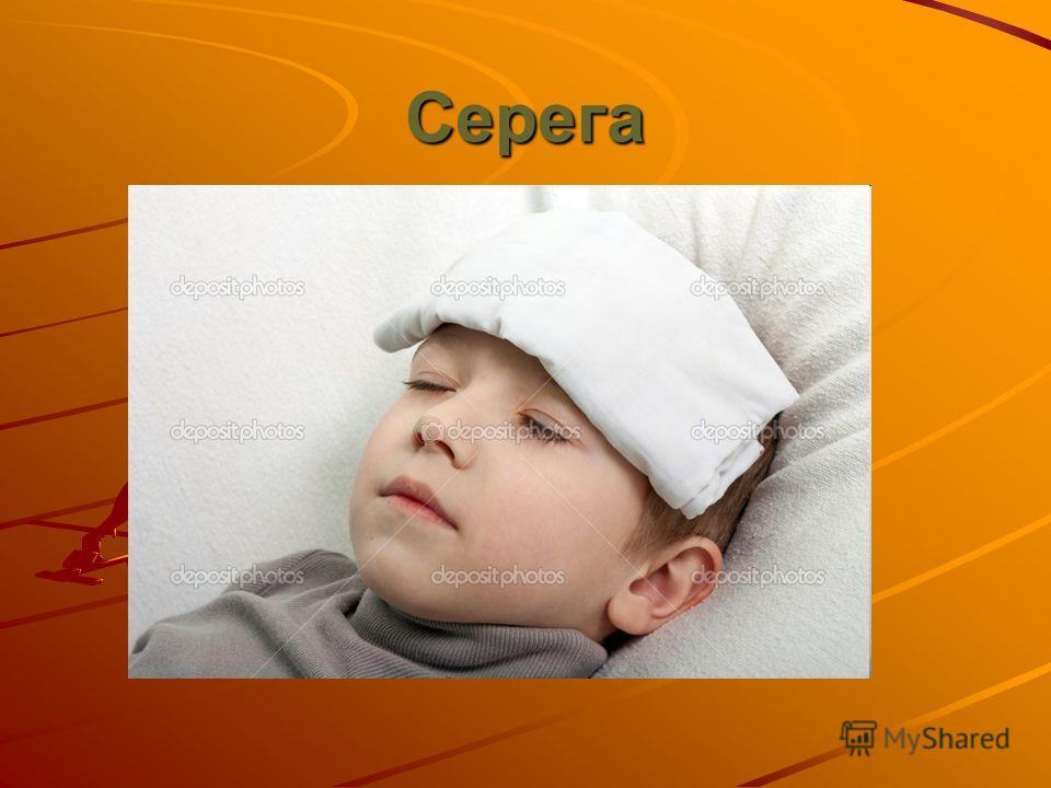 Серега