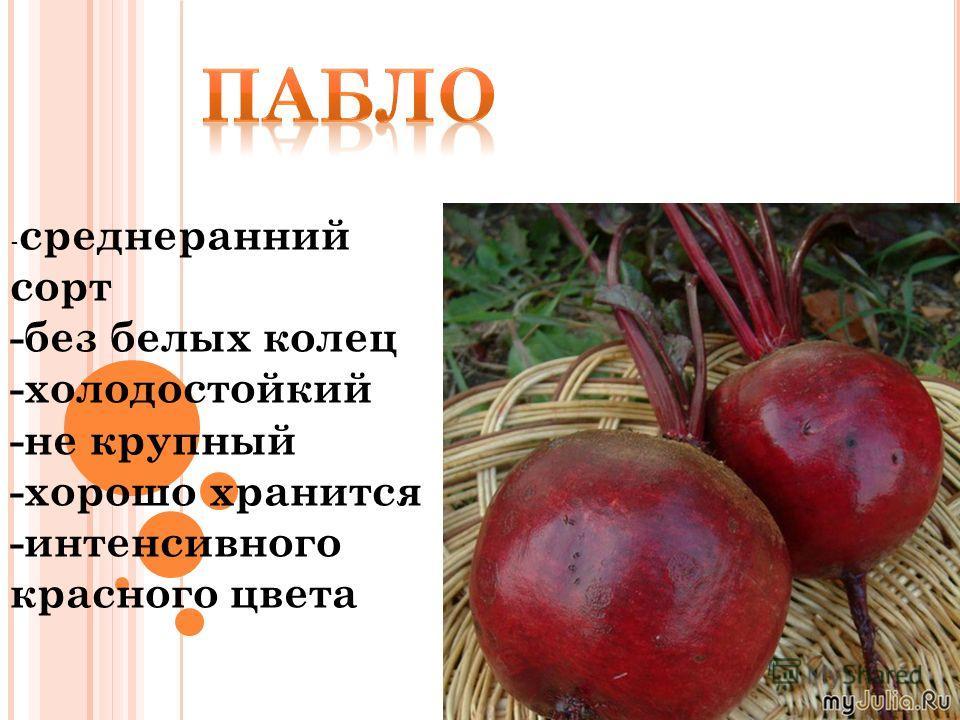 - среднеранний сорт -без белых колец -холодостойкий -не крупный -хорошо хранится -интенсивного красного цвета
