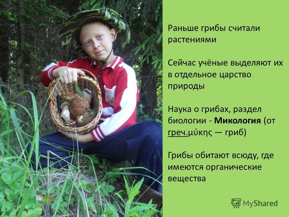 Раньше грибы считали растениями Сейчас учёные выделяют их в отдельное царство природы Наука о грибах, раздел биологии - Микология (от греч.μύκης гриб) Грибы обитают всюду, где имеются органические вещества