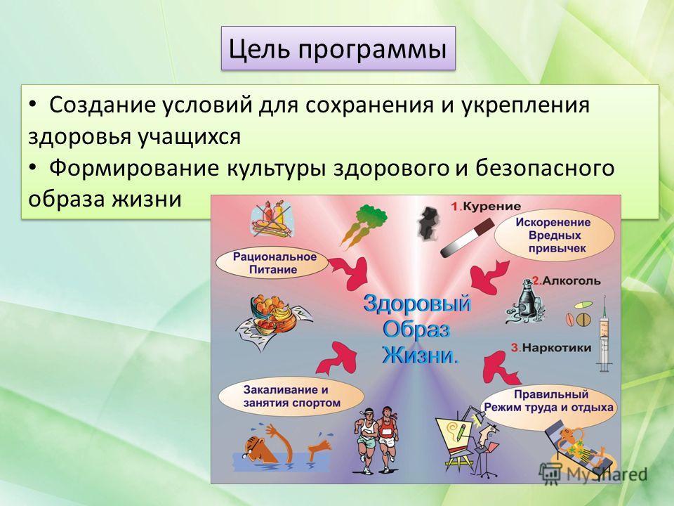 Цель программы Создание условий для сохранения и укрепления здоровья учащихся Формирование культуры здорового и безопасного образа жизни Создание условий для сохранения и укрепления здоровья учащихся Формирование культуры здорового и безопасного обра