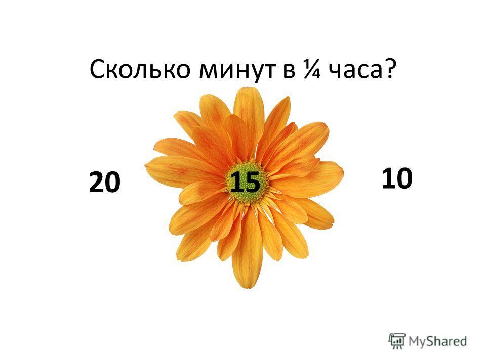Сколько минут в ¼ часа? 2015 10