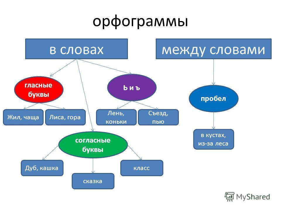 орфограммы с ь и ъ знаком