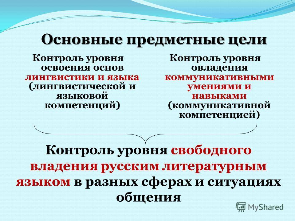 Основные предметные цели Контроль уровня освоения основ лингвистики и языка (лингвистической и языковой компетенций) Контроль уровня овладения коммуникативными умениями и навыками (коммуникативной компетенцией) Контроль уровня свободного владения рус