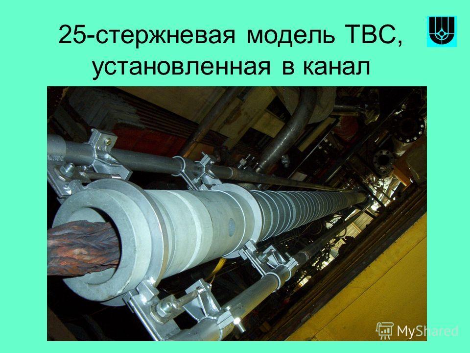 25-стержневая модель ТВС, установленная в канал