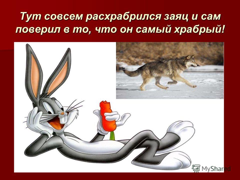 Тут совсем расхрабрился заяц и сам поверил в то, что он самый храбрый!