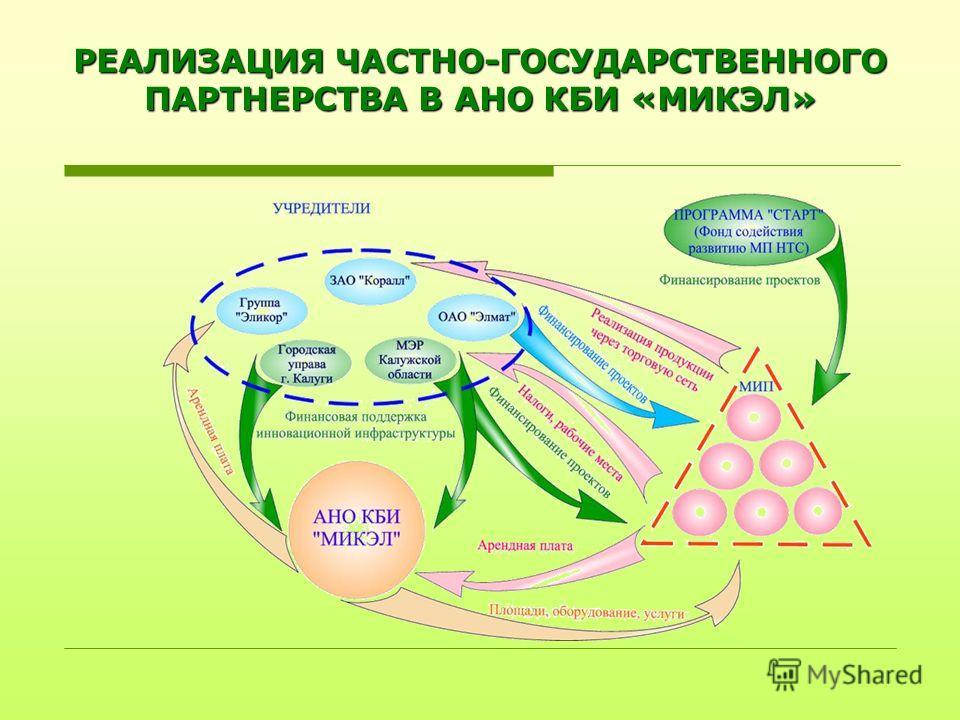 РЕАЛИЗАЦИЯ ЧАСТНО-ГОСУДАРСТВЕННОГО ПАРТНЕРСТВА В АНО КБИ «МИКЭЛ»