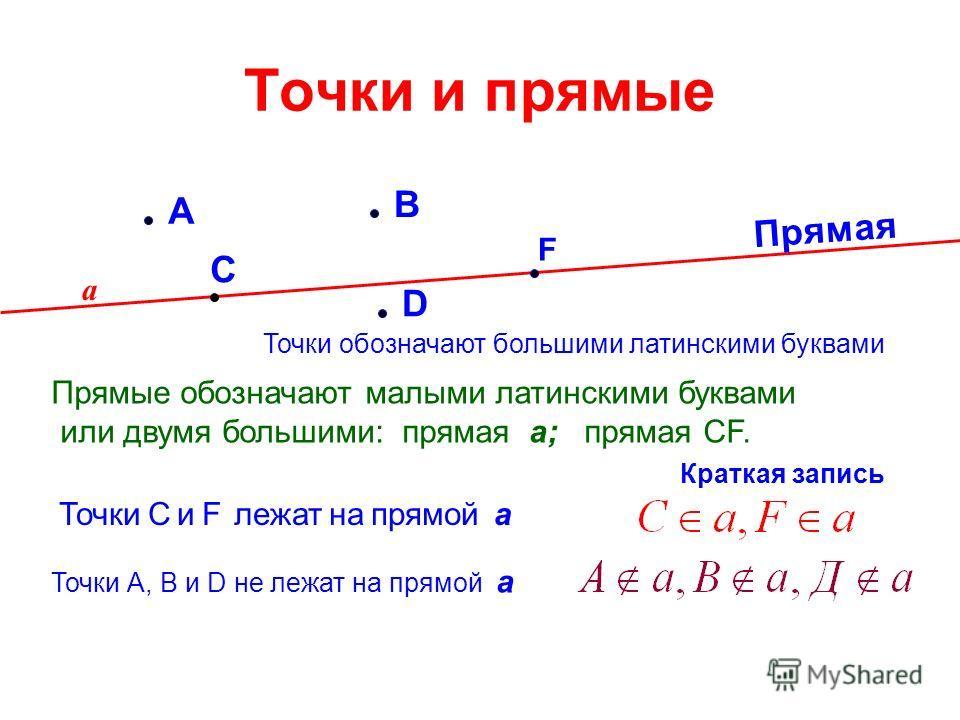 Точки и прямые А D С В F Точки обозначают большими латинскими буквами Прямая а Прямые обозначают малыми латинскими буквами или двумя большими: прямая а; прямая CF. Точки С и F лежат на прямой а Точки А, В и D не лежат на прямой а Краткая запись
