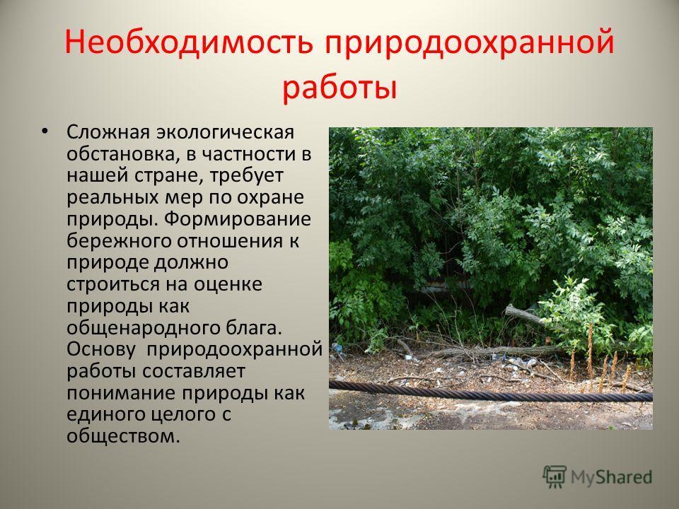 Необходимость природоохранной работы Сложная экологическая обстановка, в частности в нашей стране, требует реальных мер по охране природы. Формирование бережного отношения к природе должно строиться на оценке природы как общенародного блага. Основу п