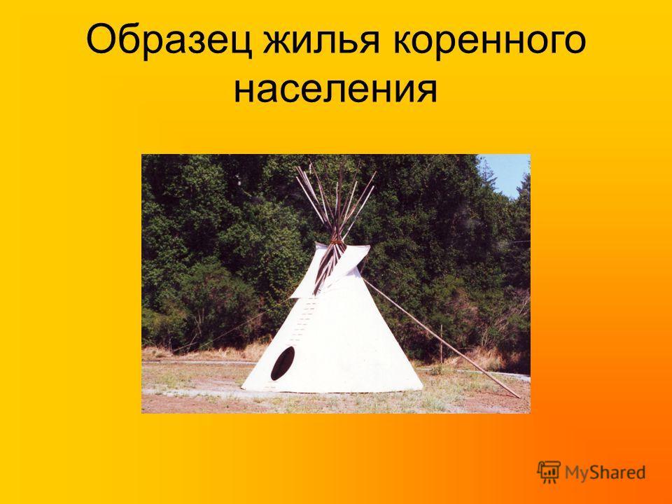 Образец жилья коренного населения